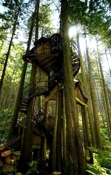 Three Story Tree House, British Columbia, Canada