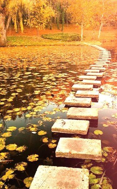 Stepping Stone Path, Poland
